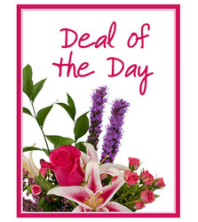 Deal of the Day from Brennan's Secaucus Meadowlands Florist