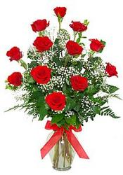 Classic Dozen Long Stem Roses  from Brennan's Secaucus Meadowlands Florist