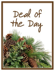 Deal of the Day Winter from Brennan's Secaucus Meadowlands Florist