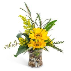 Golden Morning from Brennan's Secaucus Meadowlands Florist