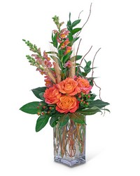 Captivating Coral from Brennan's Secaucus Meadowlands Florist