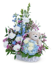 Beary Lovable from Brennan's Secaucus Meadowlands Florist