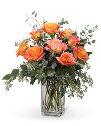 Free Spirit Roses (9) from Brennan's Secaucus Meadowlands Florist