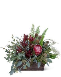 Botanic Beauty from Brennan's Secaucus Meadowlands Florist
