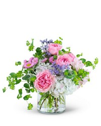 Cloud Nine from Brennan's Secaucus Meadowlands Florist