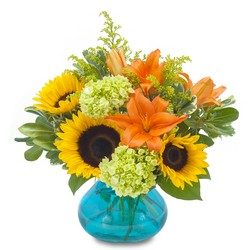 Beautiful Day from Brennan's Secaucus Meadowlands Florist