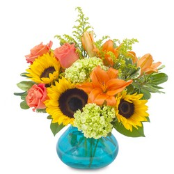 Sunshine Day from Brennan's Secaucus Meadowlands Florist