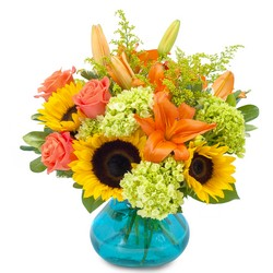 Delightful Day from Brennan's Secaucus Meadowlands Florist