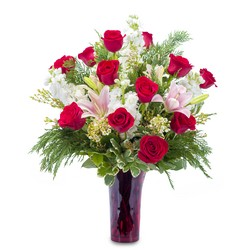 Winter Passion from Brennan's Secaucus Meadowlands Florist