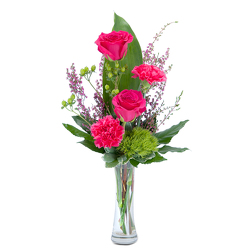 Carefree from Brennan's Secaucus Meadowlands Florist