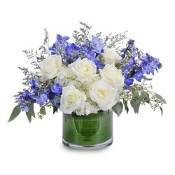Blue Frost from Brennan's Secaucus Meadowlands Florist