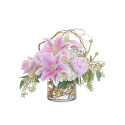 Delicate Beauty from Brennan's Secaucus Meadowlands Florist