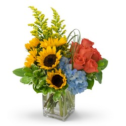 Fun in the Sun from Brennan's Secaucus Meadowlands Florist