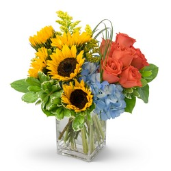 Summer Fun from Brennan's Secaucus Meadowlands Florist
