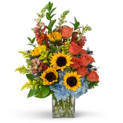Summertime Fun from Brennan's Secaucus Meadowlands Florist