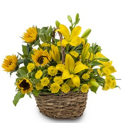 Basket of Sunshine from Brennan's Secaucus Meadowlands Florist