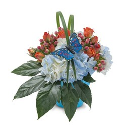 Berries in Blue from Brennan's Secaucus Meadowlands Florist