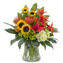Harvest Sun from Brennan's Secaucus Meadowlands Florist