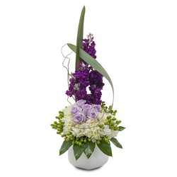 Lush and Lavender from Brennan's Secaucus Meadowlands Florist