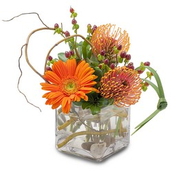 Orange Rocks from Brennan's Secaucus Meadowlands Florist