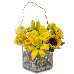 Sunny Side Up from Brennan's Secaucus Meadowlands Florist