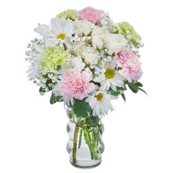 Soft and Sweet from Brennan's Secaucus Meadowlands Florist