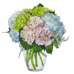 Southern Charm from Brennan's Secaucus Meadowlands Florist