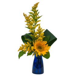 Simply Sunflower from Brennan's Secaucus Meadowlands Florist