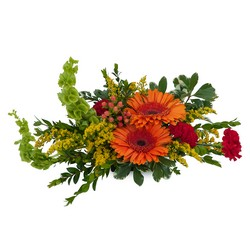 Be Thankful from Brennan's Secaucus Meadowlands Florist