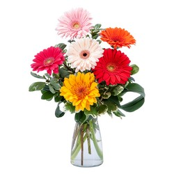 Colorful! from Brennan's Secaucus Meadowlands Florist