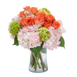 Beauty in Blossom from Brennan's Secaucus Meadowlands Florist
