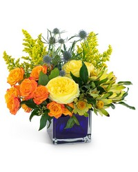 Bloom with Brilliance from Brennan's Secaucus Meadowlands Florist