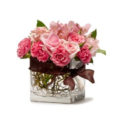 Blushing Pink from Brennan's Secaucus Meadowlands Florist