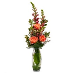Trio of Orange from Brennan's Secaucus Meadowlands Florist