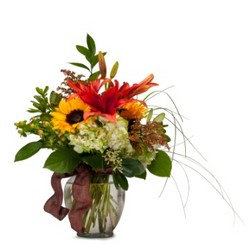 Color Me Autumn from Brennan's Secaucus Meadowlands Florist