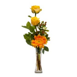Bring Me Sunshine from Brennan's Secaucus Meadowlands Florist