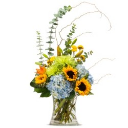 Favorite Gatherings from Brennan's Secaucus Meadowlands Florist