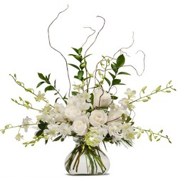 White Elegance from Brennan's Secaucus Meadowlands Florist