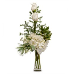 Heavenly White from Brennan's Secaucus Meadowlands Florist