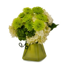 Cute as a Button from Brennan's Secaucus Meadowlands Florist