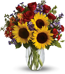 Pure Happiness from Brennan's Secaucus Meadowlands Florist